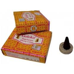 Encens Goloka cônes