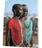 Fastueuse Afrique un tres beau livre de Angela Fisher belles photos