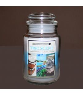 Bougie 3 parfums fraicheur tropicale