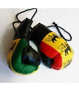 Paire de mini gants de boxe Lion Rasta